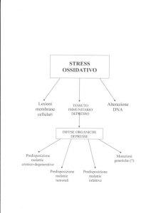 Schema stress ossidativo