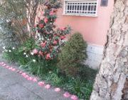 Il giardino di Lena e Miriam