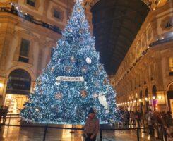 Buon Natale dal Direttore di Comunicazione e Forme Maria Richichi